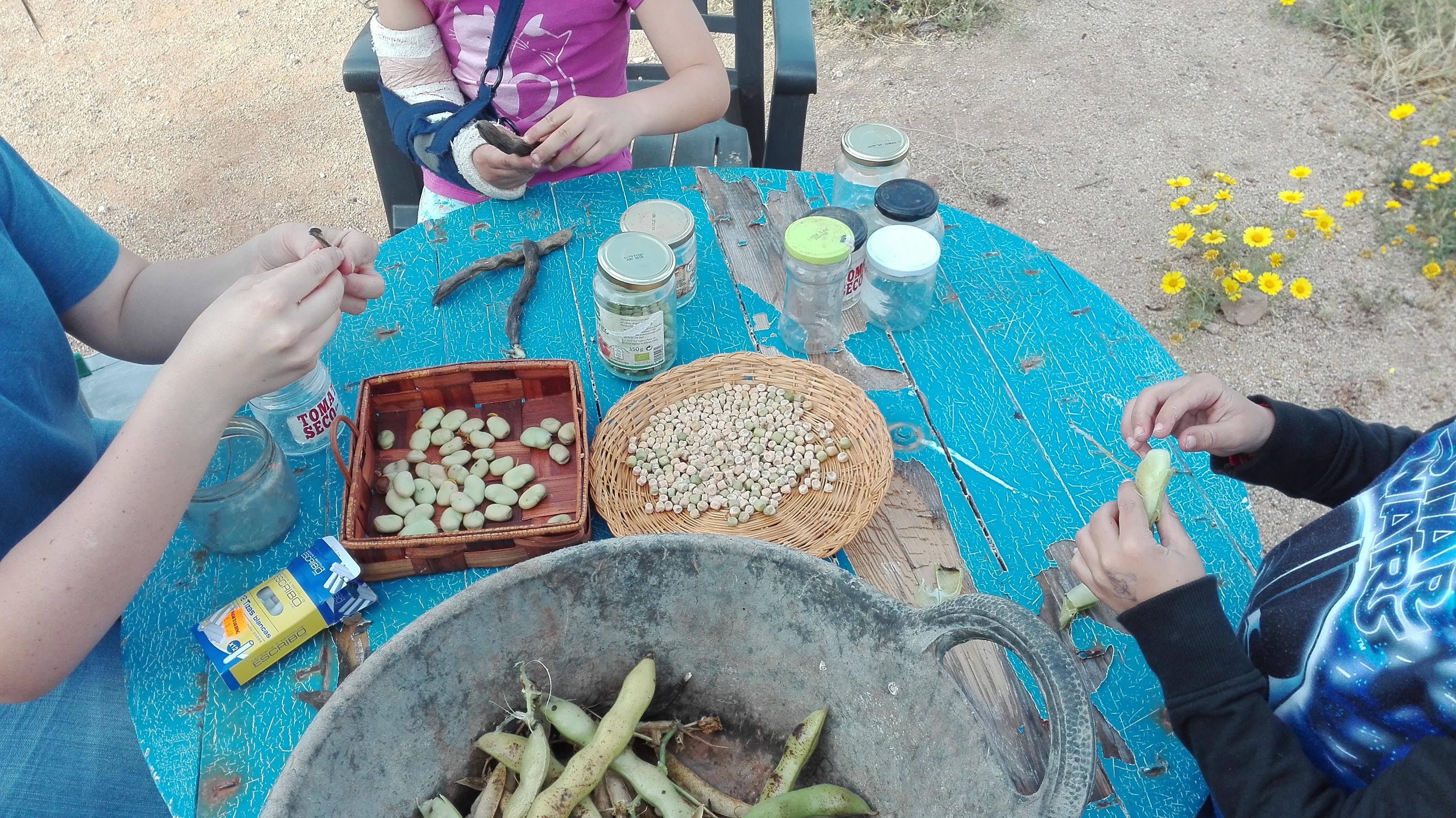 Qué es la Soberanía Alimentaria