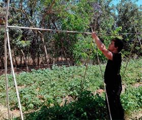 Formación de agricultura ecológica
